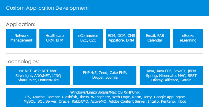 Custom Application Development outsourcing service by IMT - Leading Offshore Development Company in Vietnam
